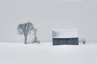 Vieille grange et tempête d'hiver