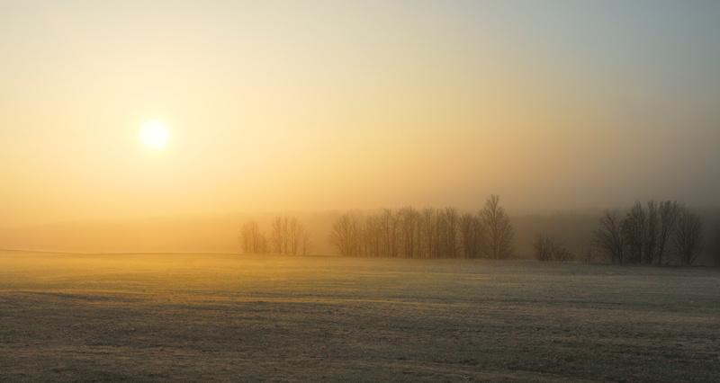 RIsing sun in the mist
